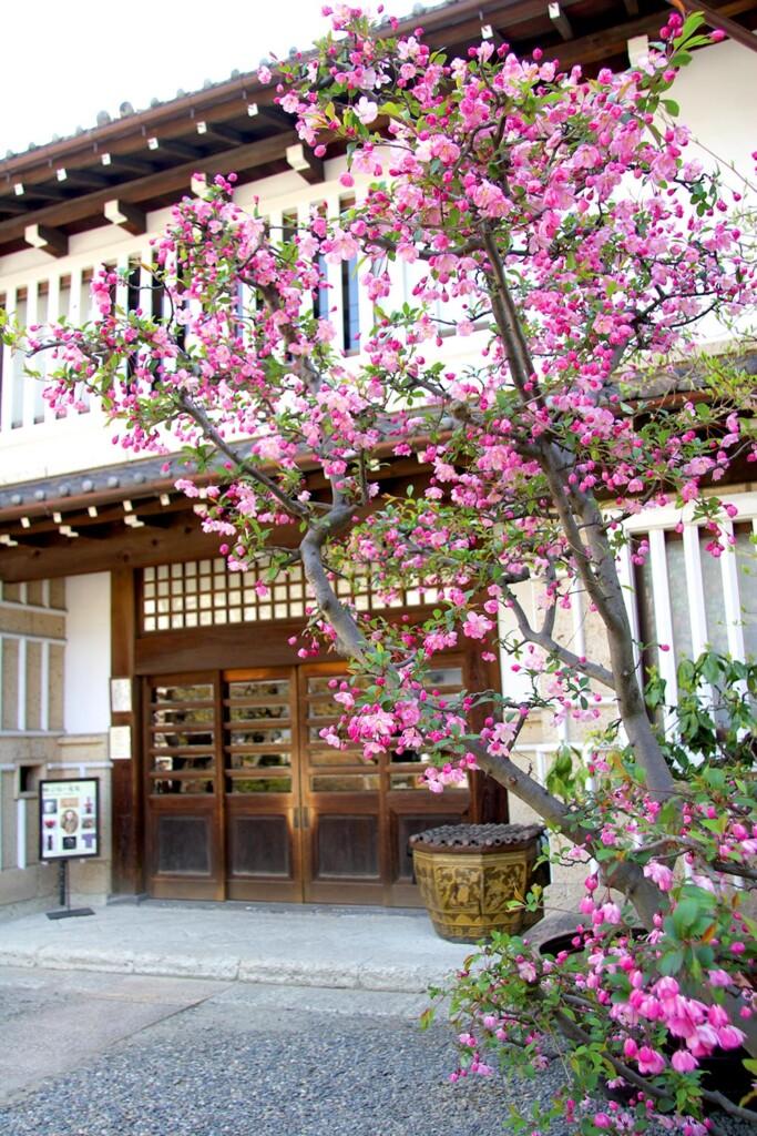 日本民藝館友の会